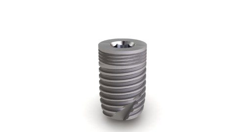 Implant Massif Ø6 L10mm