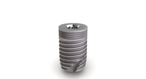 Implant Massif Ø6 L10mm
