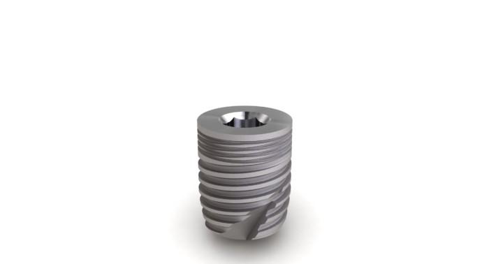 Implant Massif Ø6 L8mm